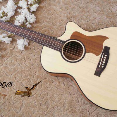 Đàn Guitar Acoustic Thuận AT-02